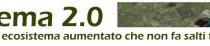 ecosistema-410x46.jpg